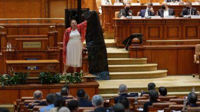 sosoaca parlament